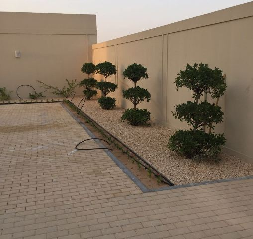 Sharjah-project
